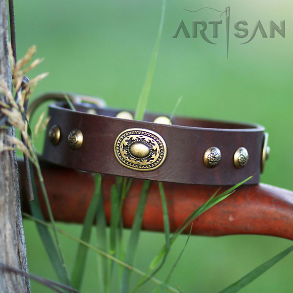 Brown Leather Siberian Husky Collar Handcrafted for Titan