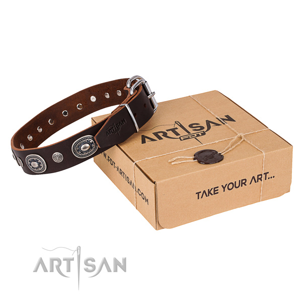 Fashionable brown leather dog collar