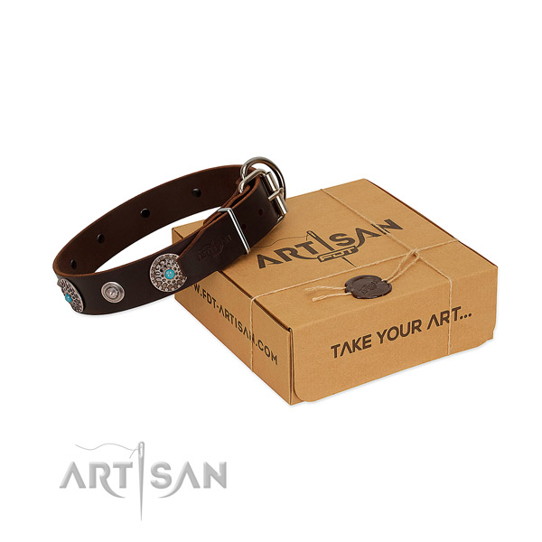 Decorated brown dog collar of high-quality leather