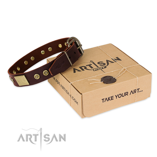 Brown leather dog collar for daily activities
