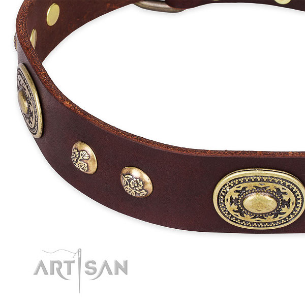 Brown leather dog collar for fashion walking