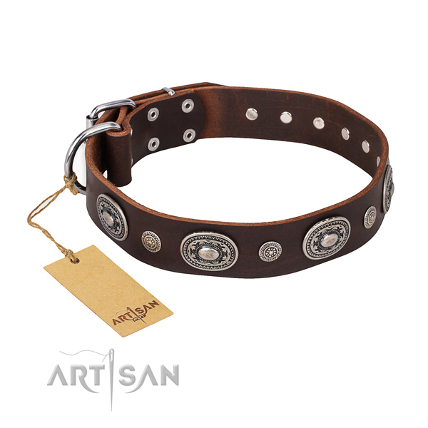 Brown leather dog collar with fancy decorations