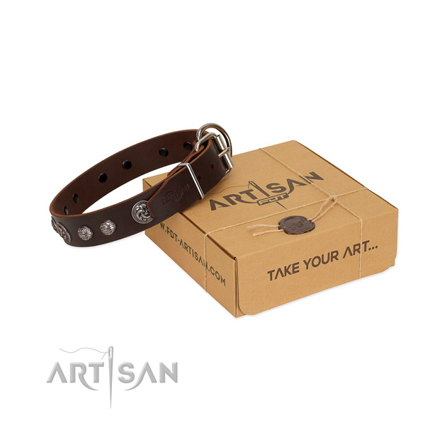 Brown genuine leather dog collar with amazing decorations