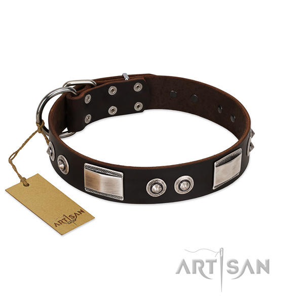 Brown dog collar for comfortable daily walks
