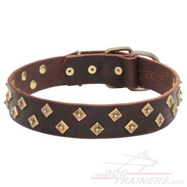 Brown leather collar with pyramids for your dog