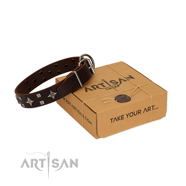 Fantastic brown leather dog collar for pleasant daily wear