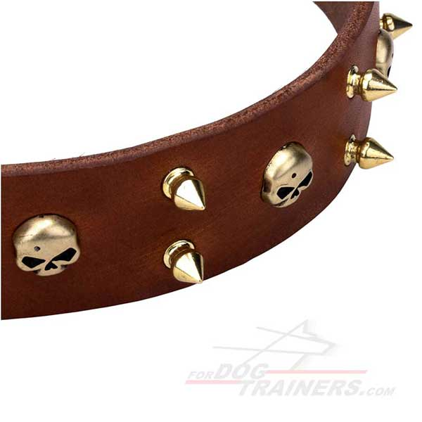Decorated spikes and skulls brown leather collar