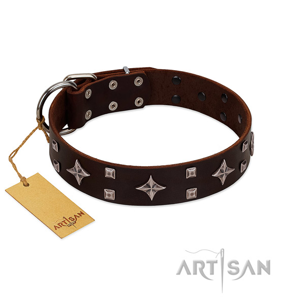 FDT Artisan leather dog collar to pamper your pooch
