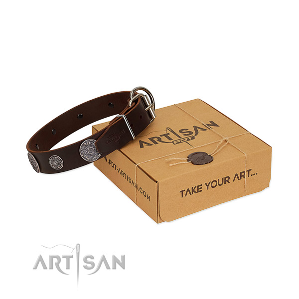 Brown genuine leather dog collar of premium quality