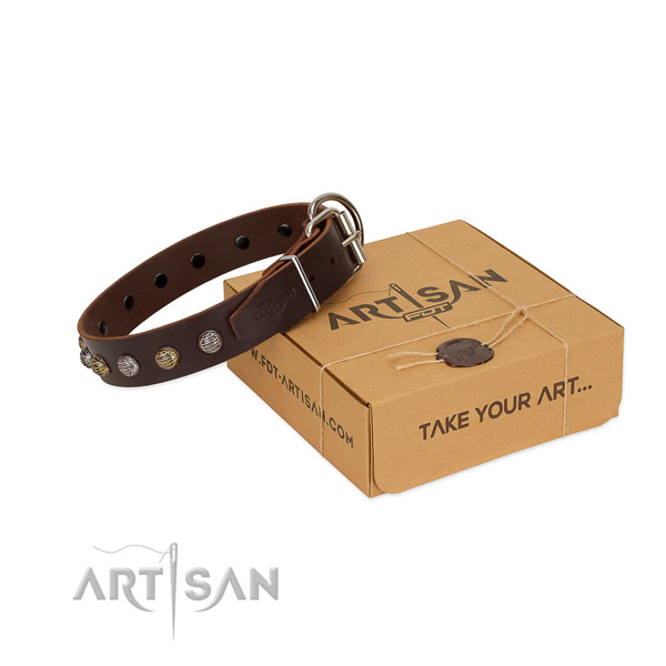 Trendy Dog Collar of Genuine Leather Decorated with Studs
