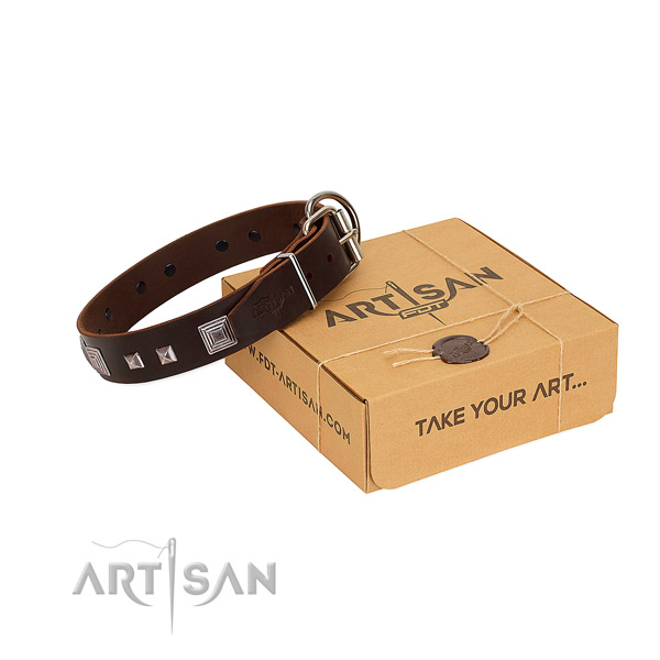 FDT Artisan leather dog collar for better control