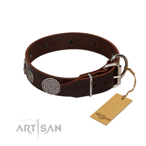 Fabulous leather dog collar with sturdy fittings