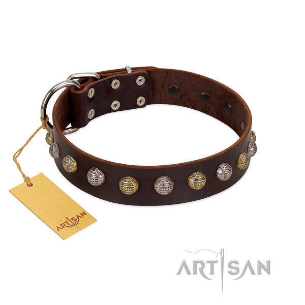 Trendy Dog Collar Decorated with Fashionable Oval Plates and Tiles