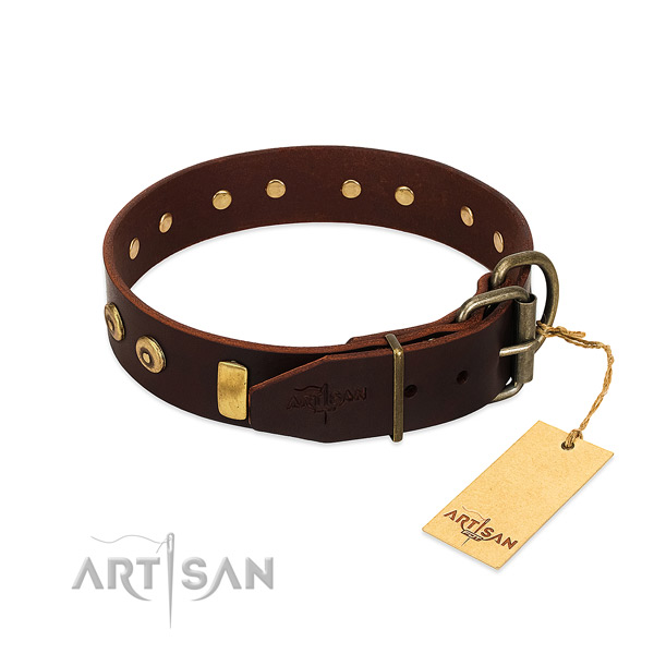 Brown dog collar that is easy to adjust