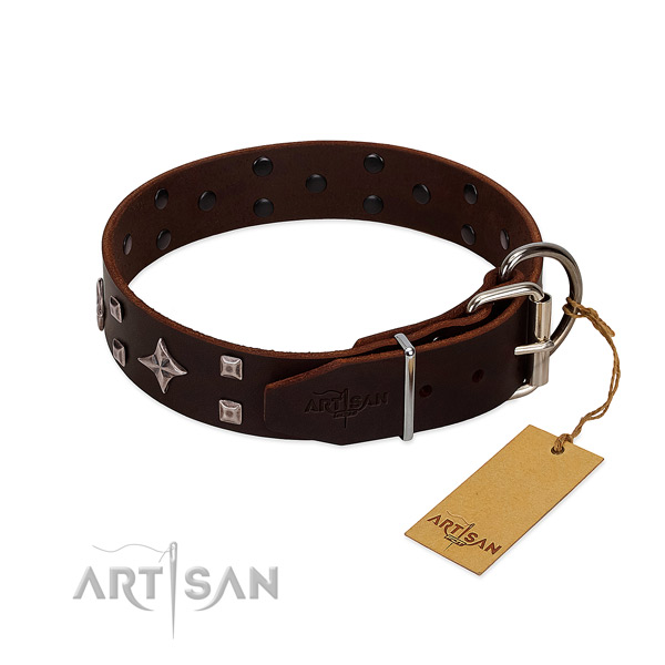 Gentle leather dog collar for daily wear