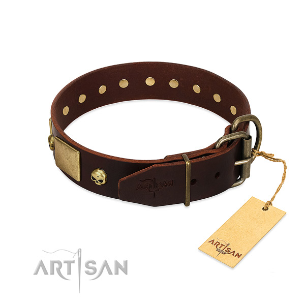 Brown Dog Collar for Pleasant Pastime