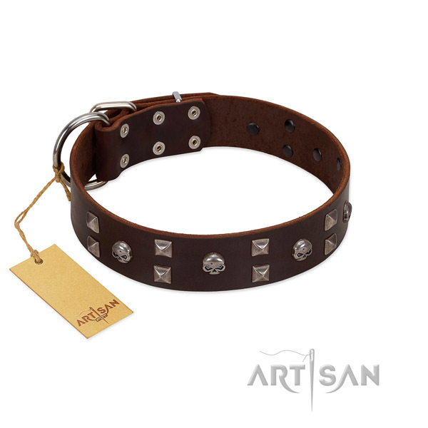 Reliable FDT Artisan leather dog collar for better