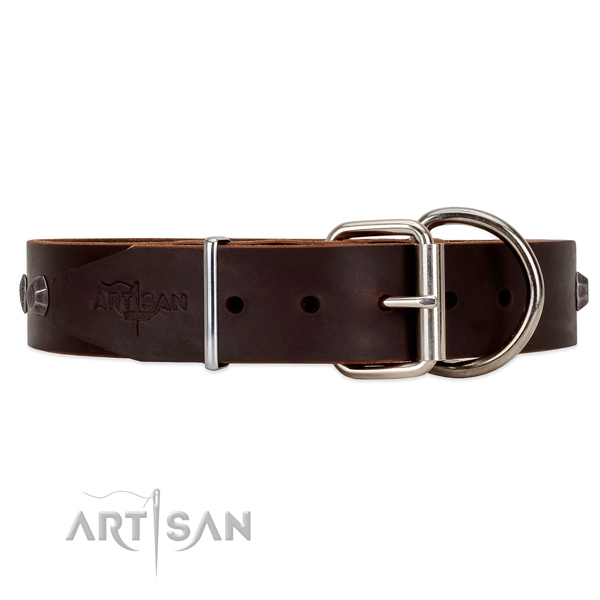 Leather dog collar with chrome plated steel hardware