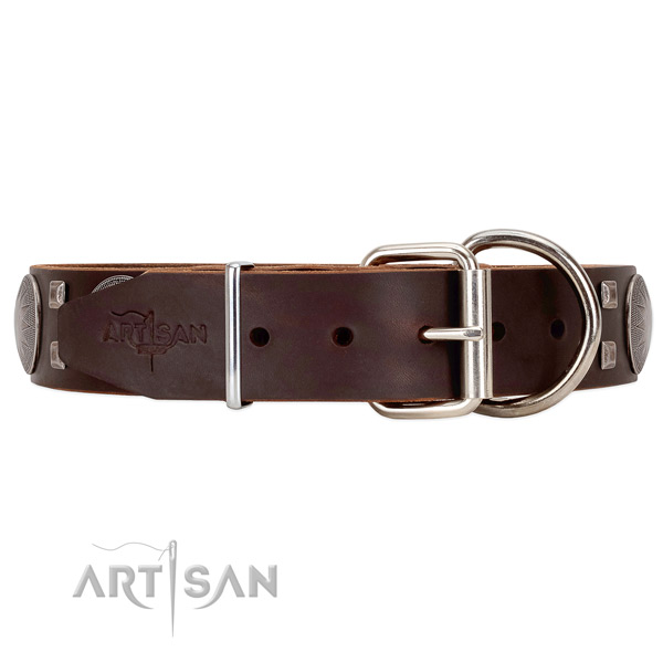 Leather dog collar with good silver-like hardware
