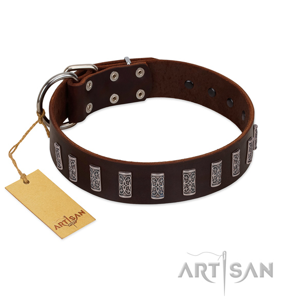 Fabulous FDT Artisan brown leather dog collar