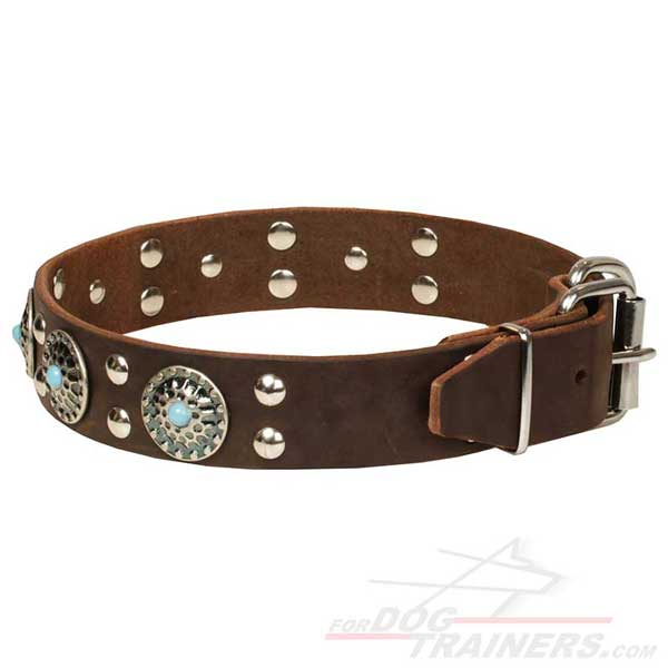 Nickel-plated Fittings on Brown Leather Dog Collar