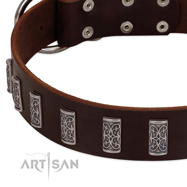 Brown leather dog collar with vintage decorations