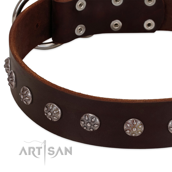 Brown leather dog collar with flower decorations