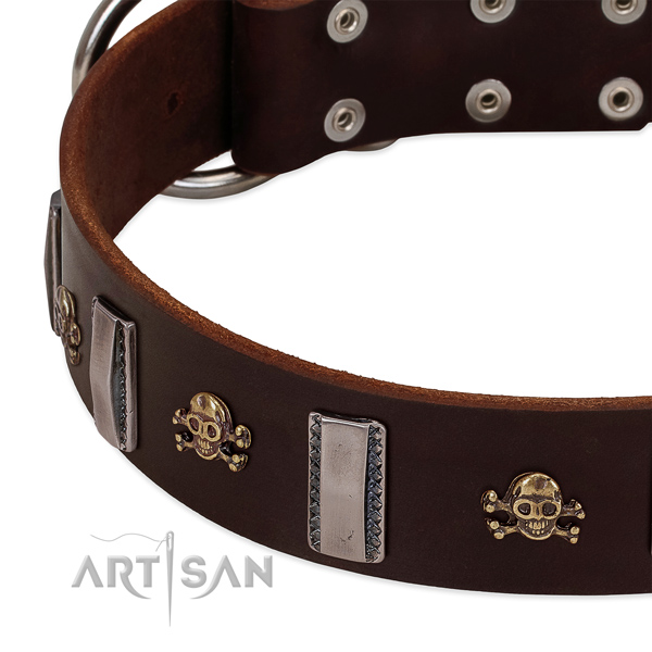 FDT Artisan dog collar with silver-like decoration