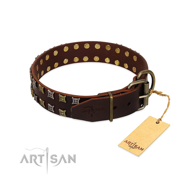 Comfortable Artisan leather dog collar with polished