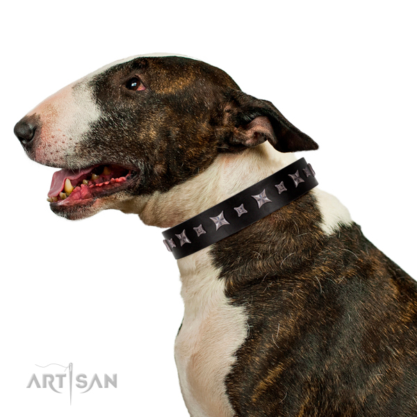 Walking top-notch quality walking leather Bull-Terrier collar