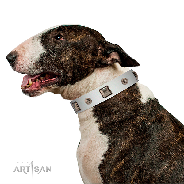 Beautiful white leather collar for walks