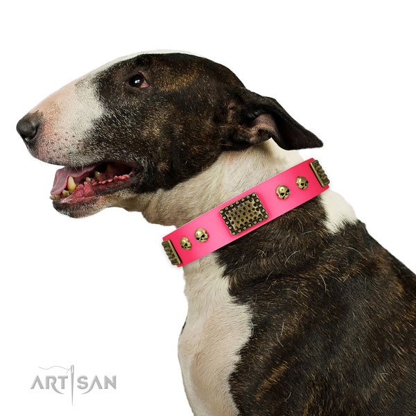 Bull Terrier daily use dog collar of best quality natural leather