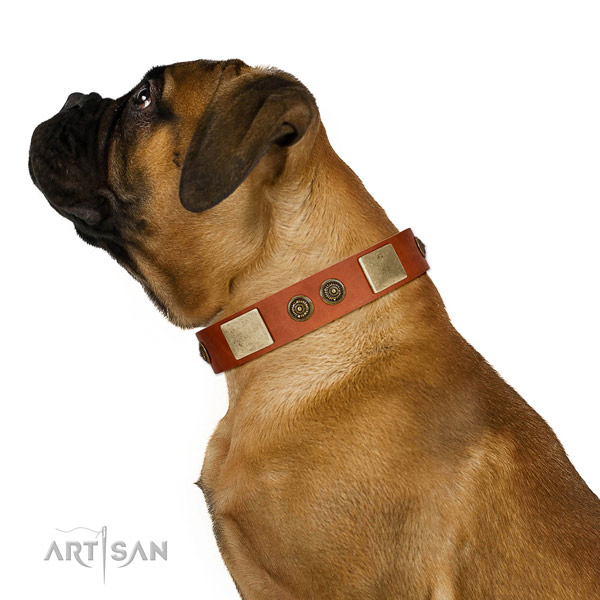 Smooth Leather Bullmastiff Collar with Stylish Adornments