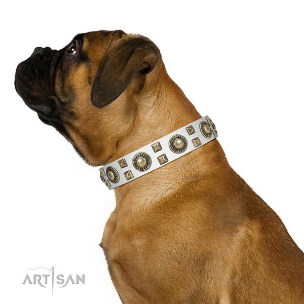 Handcrafted walking leather Bullmastiff collar