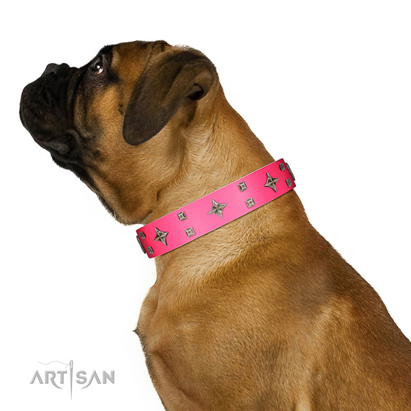 Natural leather Bullmastiff collar for better fit