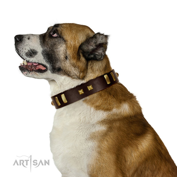 Gentle to Touch Brown Genuine Leather Collar for Central