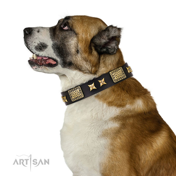 Central Asian Shepherd everyday use dog collar of designer leather