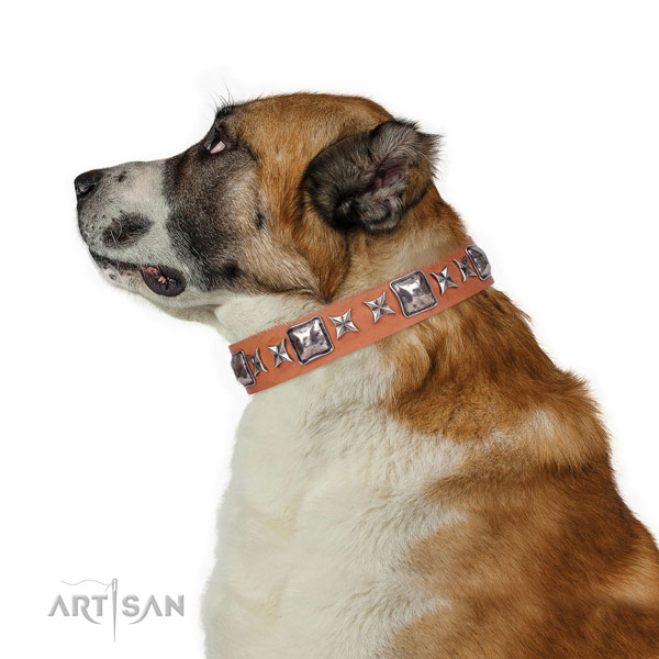 Central Asian Shepherd easy adjustable genuine leather dog collar with studs