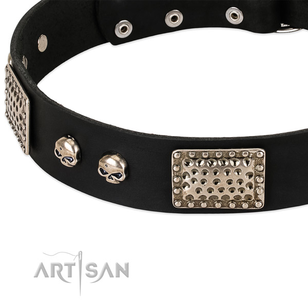 Chrome Plated Decorative Parts on Black Dog Collar