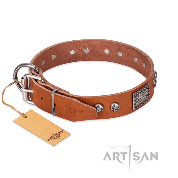 Old Silver Look Decorative Parts on Tan Dog Collar