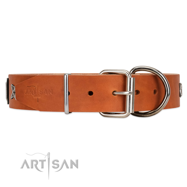 Tan leather dog collar with durable fittings