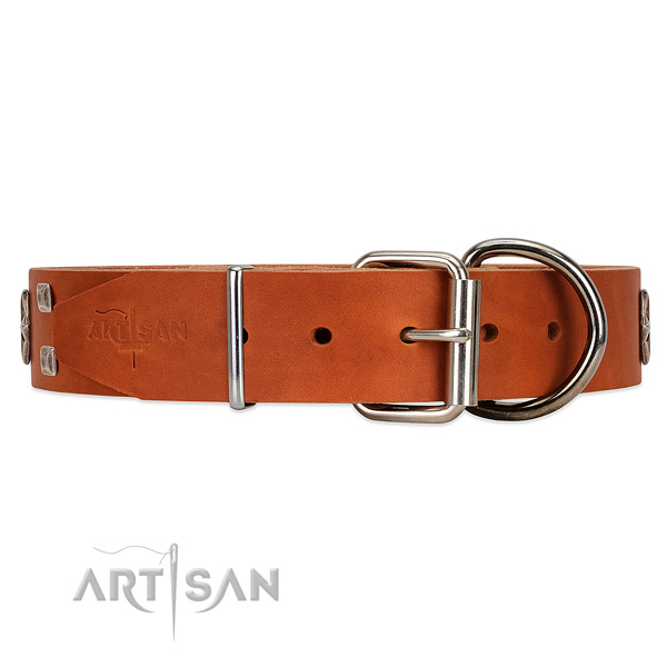 Long-lasting leather dog collar with belt-like buckle