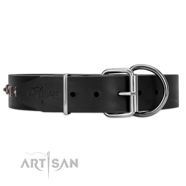 Leather dog collar with cool silver-like hardware