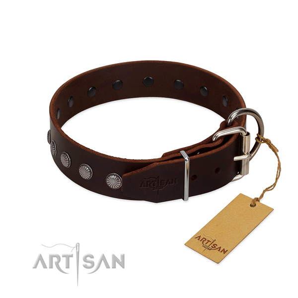 Comfy to wear leather dog collar for safe walks