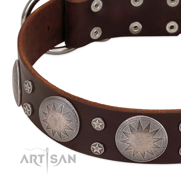 FDT Artisan dog collar with amazing stars