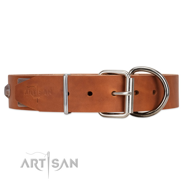 Leather dog collar with steel hardware
