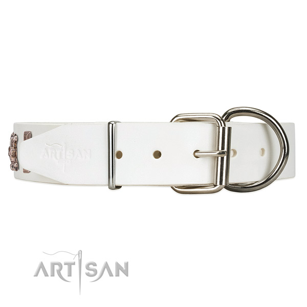 White Leather dog collar with posh silver-like hardware