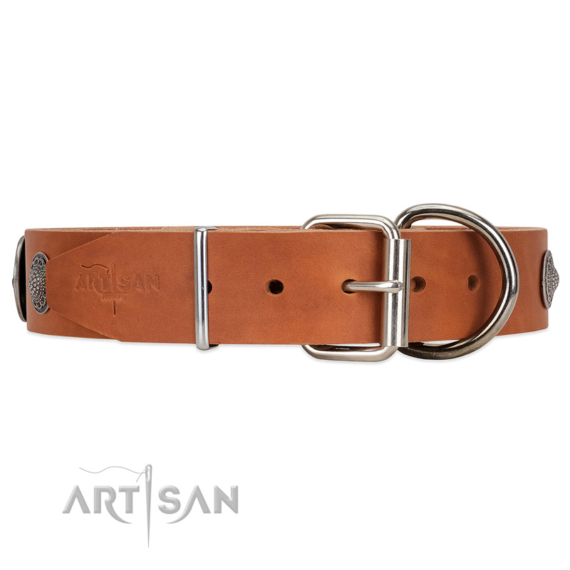 Unique style tan leather dog collar with tough fittings