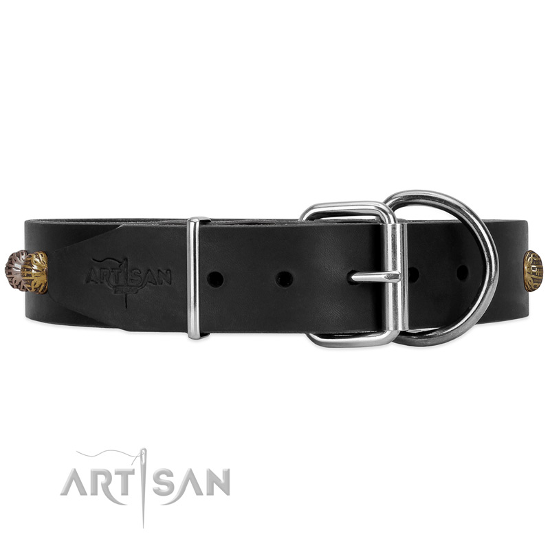 Black dog collar with chrome plated hardware