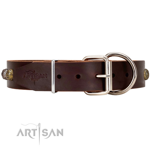 Leather Dog Collar with Chrome-plated Fittings